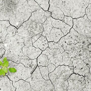 Arriva MUGO, l'assistente personale per la lotta ai cambiamenti climatici